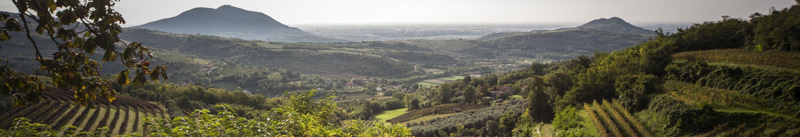 colli-euganei-baone