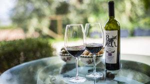 Azienda vinicola immersa nei Colli Euganei - Le Volpi