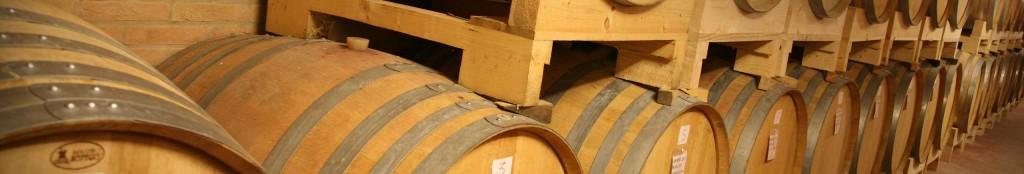 Vendita online vino bianco Colli euganei - Le Volpi - Produzione propria