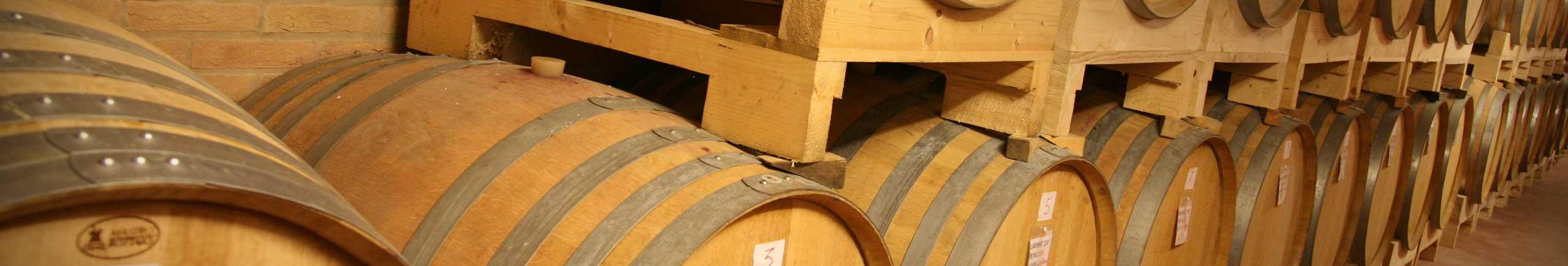 Botti di vino Le Volpi - wine barrels