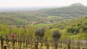 Agriturismo Baone, immerso nei Colli Euganei